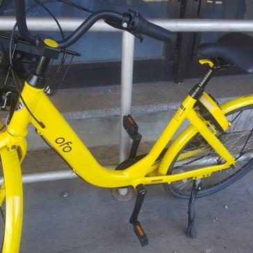 Ofo Bike